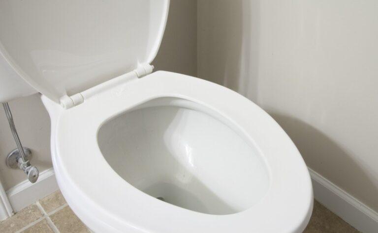 toilet-e1456179831178