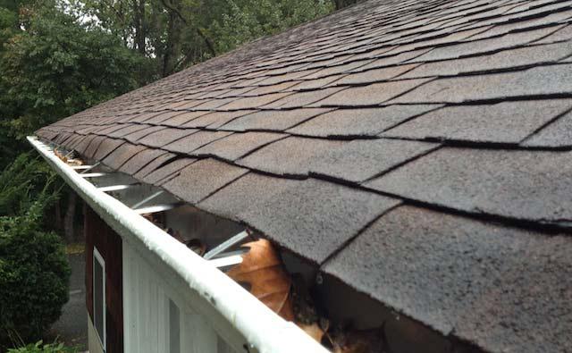 leaky-roof-1
