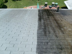 Roof Cleaning in PA