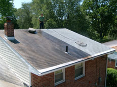 Roof Cleaning - Side by Side