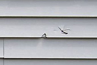 How To Repair A Hole In Vinyl Siding Diy Pj Fitzpatrick