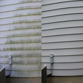 How to Clean Mold Off Siding