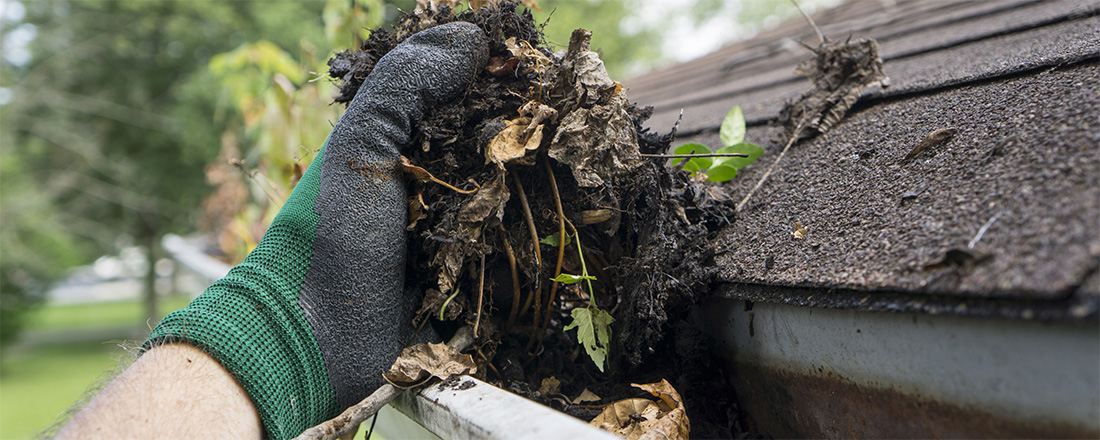Gutter Cleaning - What to Know
