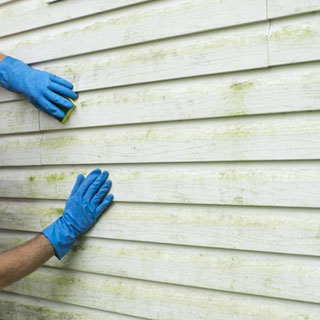 How to Clean Siding