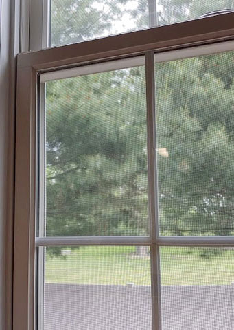 Replacement Windows in Maryland